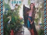 VELÁ DE SANTIAGO Y SANTA ANA 2019