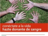 CAMPAÑA DE DONACIÓN DE SANGRE EN NUESTRA HERMANDAD