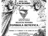 VERBENA Y TÓMBOLA BENÉFICA 2015